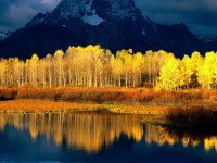 Осень, фото, здравствуйте! :)