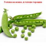 2012-02-24_184653