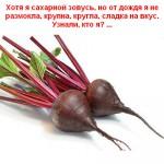 2012-02-24_185916