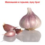 2012-02-24_190924