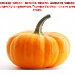 2012-02-24_191114