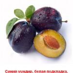 2012-02-24_201249
