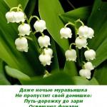 2012-02-25_110823