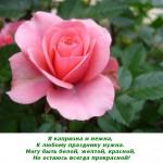 2012-02-25_112422