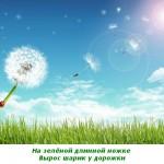 2012-02-25_115443