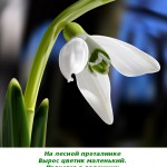 2012-02-25_115849