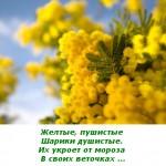 2012-02-25_121418