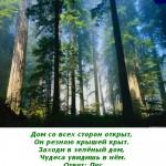 2012-02-25_162845