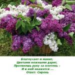 2012-02-25_165405
