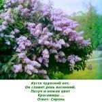 2012-02-25_165456