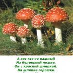 2012-02-26_171435