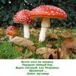 2012-02-26_171530