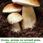 2012-02-26_172219