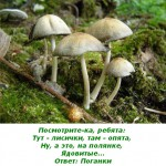2012-02-26_175318