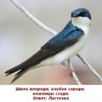 2012-02-26_232207