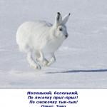 2012-02-27_095524
