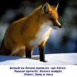 2012-02-27_095805