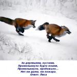 2012-02-27_100255