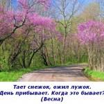 2012-03-09_112759