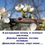2012-03-09_112924