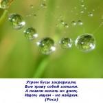 2012-03-09_120831