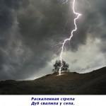 2012-03-09_121508