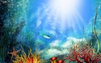 БАДы и Коралловый клуб