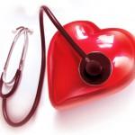 Сердце хрупкое — оно бьется! Тесты по здоровью сердечно-сосудистой системы