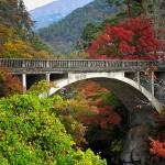 Bridge album 1