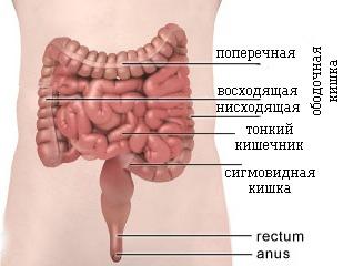 kicheshnik