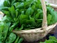 Оладьи с кабачком и шпинатом
