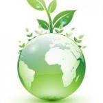 Биоэнергетика, время и дети (видео)